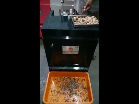 Double Supari (Betel Nut) Cutting Machine