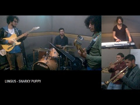 Lingus Snarky Puppy Cover Lesliejohnsontv Video Mp3loverorg