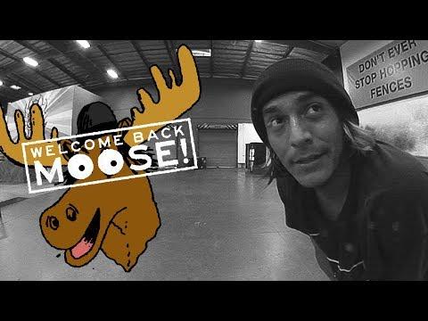 Moose - Welcome Back
