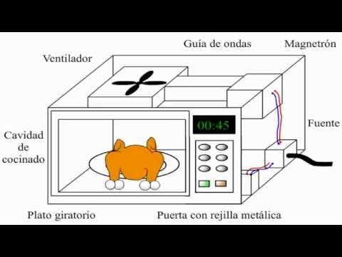 ¿Cómo funciona un horno de microondas? / microwave