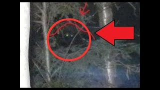 Bigfoot\Sasquatch || Something Creepy Watching Me From My Woods! (Uncut Original Video)