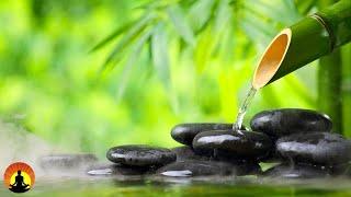 🔴 Relaxing Music 24/7, Calming Music, Spa Music, Meditation Music, Sleep, Zen, Study Music, Yoga
