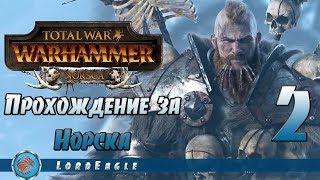 Total War: Warhammer. Прохождение за Норска #2. Конфедерация.