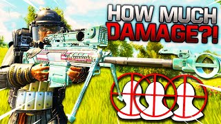 CoD BLACKOUT | HOW MUCH DAMAGE DOES A PALADiN HEADSHOT DO?! YOU WON'T BELiEVE iT!!!!