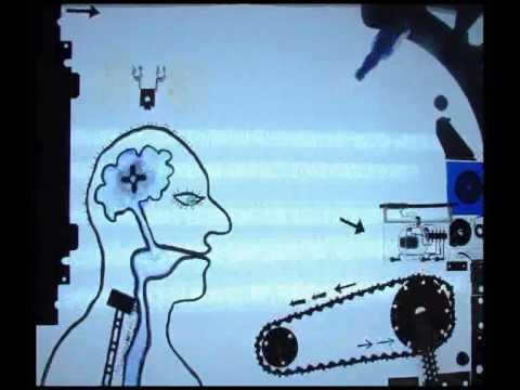 Jak działa człowiek - układ moczowy