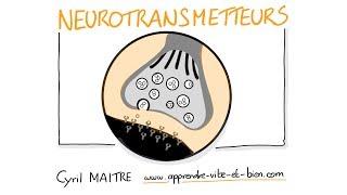 Vignette de NEUROSCIENCES EN DESSINS : Les neurotransmetteurs
