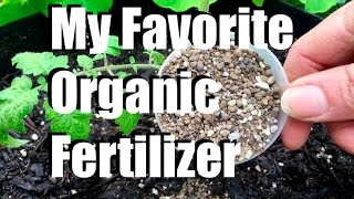 My Favorite Organic Fertilizer //  Feeding Your Garden #3