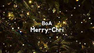 Merry Chri Inst Boa Download Flac Mp3