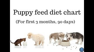 Pet Care - Puppy | Dog Feed Diet Chart For First 3 month (90 days) - Bhola Shola | Harwinder Singh