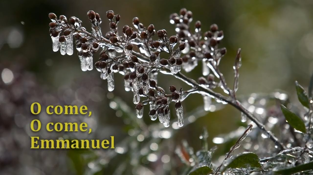 topic advent and christmas u2013 the united methodist church