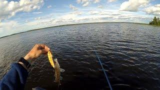 Рыбалка в советском на финском заливе