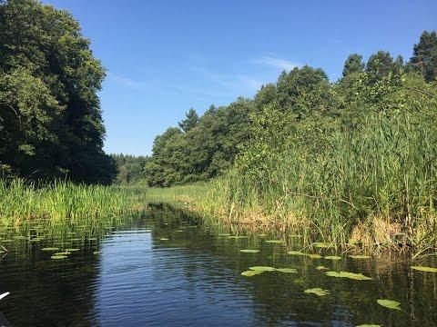 Frühling: Naturpark Uckermärkische Seen