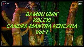 Bambu Unik Antik Ajaib Aneh Dan Langka( Vol 1 ).unique Bamboo. 珍稀的竹子