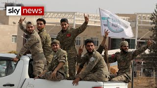 Trump declares cease-fire in northern Syria is back on