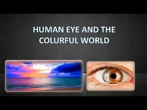 Efecte nocive asupra vederii umane
