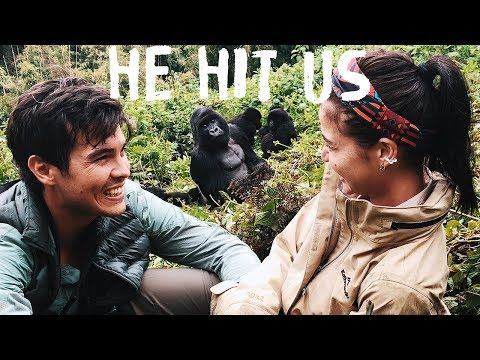 ANNE AND ERWAN IN AFRICA (GORILLAS IN RWANDA) PART 2