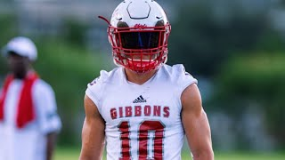 Troy Stellato Ultimate Highlights // 2021 WR Cardinal Gibbons // Junior SZN
