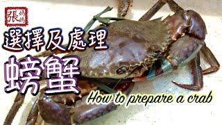 如何選擇及處理螃蟹 | How to choose and prepare a crab