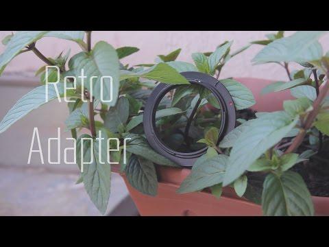 Günstiges Makro Objektiv? - Retro Adapter Kurzreview