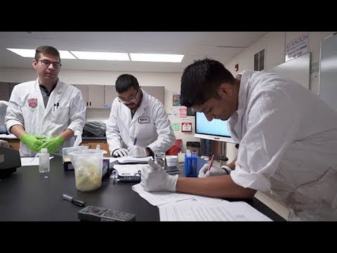 Medical Laboratory Technician video thumbnail