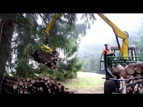Brennholzwagen