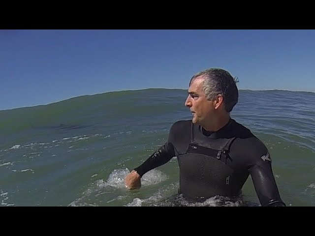 Great White Shark Surprises Solitary Surfer
