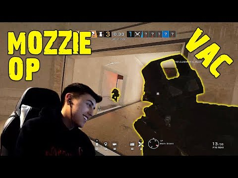 Download Why Siege Community Really Loves Macie Jay Video 3GP Mp4