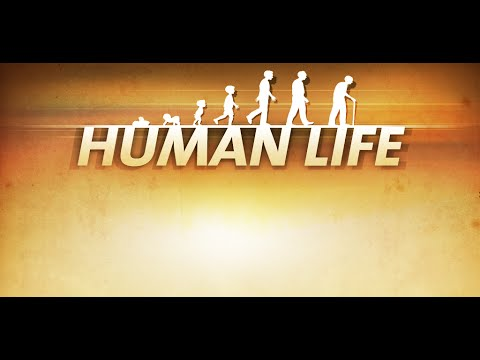 human life Most non-human primates live in social groups so how are humans different watch this video to find out note: this video is silent [please note: the above video is silent] social bonds helped ensure humans' survival sharing food, caring for infants, and building social networks helped our.