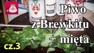 Piwo z brewkitu (Belgian Gold Ale) z dodatkiem mięty – część 3