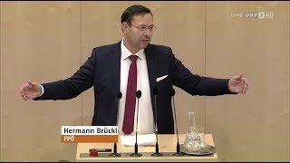 Hermann Brückl - Entlastung Für Österreich (Steuerreform) - 30.1.2019