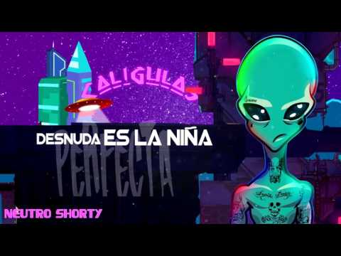 Letra Mi Muñeca Neutro Shorty Ft Micro TDH X El Ceh Bestial
