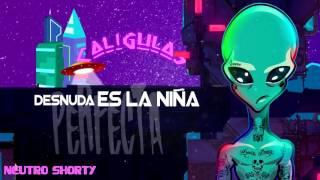 Mi Muñeca (Audio) - Neutro Shorty (Video)