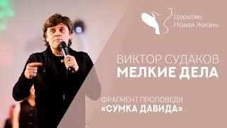 Виктор Судаков - Мелкие дела