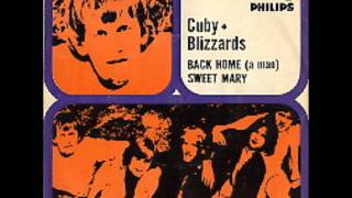 Cuby & The Blizzards - Back Home