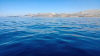 preview picture of video 'Dolphins swimming around our boat in Cavtat, Croatia [1080p]'