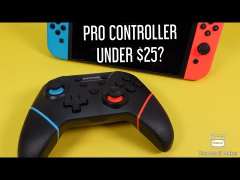 Nintendo Switch Controller Under $25 | ECHTPOWER Controller Unboxing
