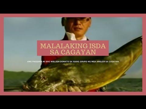 Kung alin sa mga ito ay hindi lang mga parasito