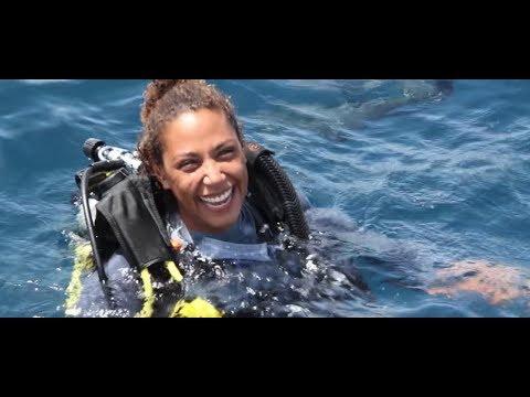 PADI Learn to Scuba Dive - YouTube