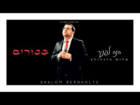 'הנה לפניך': שלום ברנהולץ בקליפ חתונה