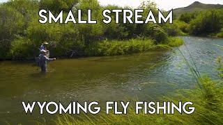 Small Stream Fly Fishing | Sheridan Wyoming
