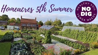No dig garden fifth summer: veg, fruit, flowers, intense cropping and easy weeding.