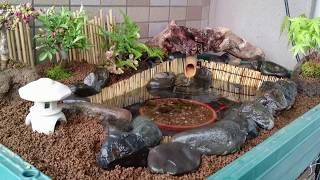 プラ舟で箱庭・盆栽ビオトープ作ってみました。