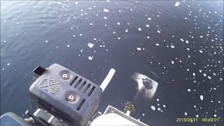 Самодельные болотоходы своими руками для рыбалки