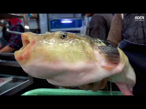 Fugu Sashimi - Street Food in Japan