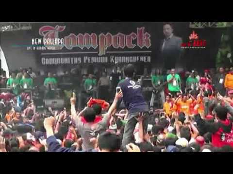 Ani Arlita - Kelayung Layung (New Pallapa 2017 Live Karang Bener Kudus)