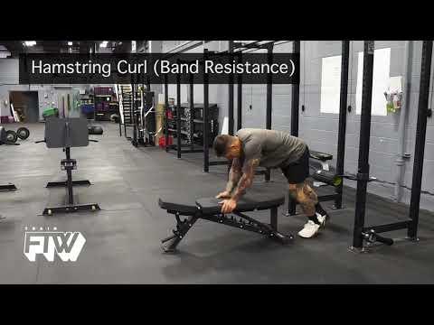 Hamstring Curl (Band Resistance)