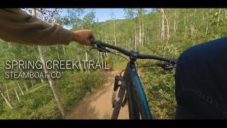 Spring Creek Trail | June 21, 2020