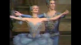 A Favourite Princess Florine and Bluebird