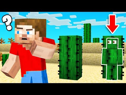 CAMO TROLL in Minecraft HIDE & SEEK!