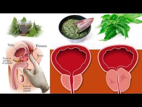 Cura di eczema di bocca